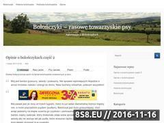 Miniaturka domeny bolonczyki.nabloga.eu
