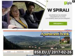 Miniaturka domeny www.borekap.friko.pl