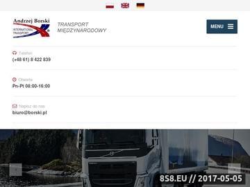 Zrzut strony Borski - transport