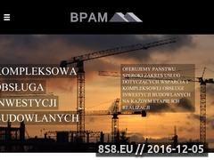 Miniaturka domeny www.bpam.pl