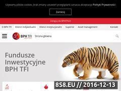 Miniaturka domeny www.bphtfi.pl