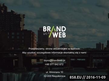 Zrzut strony Agencja interaktywna Kraków - Brandweb