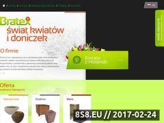Miniaturka domeny www.bratexkwiaty.pl