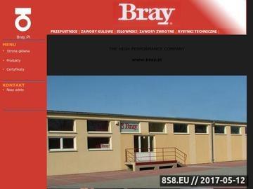 Zrzut strony Armatura przemysłowa BRAY