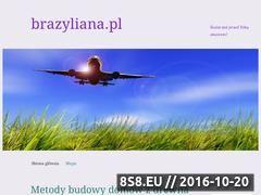 Miniaturka domeny brazyliana.pl