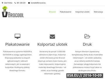 Zrzut strony Kolportaż ulotek i plakatowanie - Kraków, Warszawa, Łódź