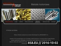 Miniaturka domeny www.bronzamet.pl