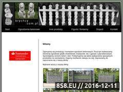 Miniaturka domeny www.brychcy.com.pl