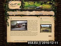 Miniaturka domeny www.brzeziniak.pl
