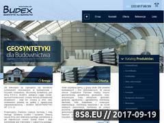 Miniaturka domeny www.budex.net