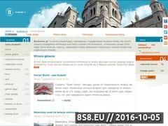 Miniaturka domeny www.budowle.pl