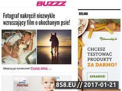 Miniaturka domeny www.buzzz.pl