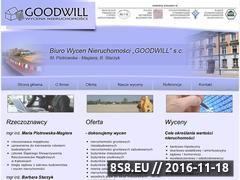 Miniaturka domeny bwn-goodwill.pl