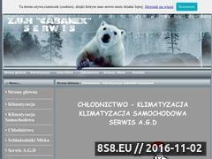 Miniaturka domeny cabanex.pl