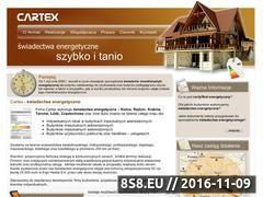 Miniaturka domeny cartex.biz.pl