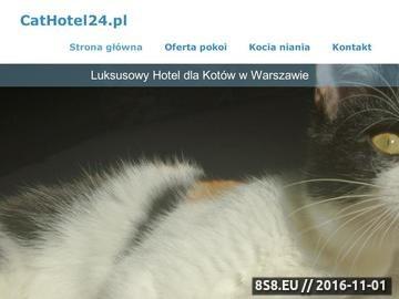 Zrzut strony Opieka dla kota Warszawa - hotel dla kotów