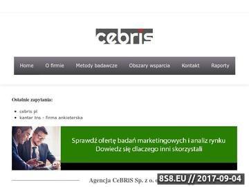 Zrzut strony Badania marketingowe i analizy rynku dla firm