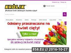 Miniaturka domeny www.cebulki-kwiatowe.pl