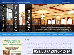 Miniaturka domeny centrumhotelowelech.pl
