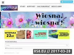 Miniaturka domeny centrumhurt.pl