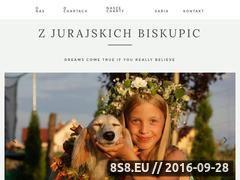 Miniaturka domeny charty.pl
