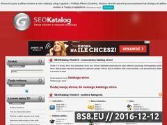 Miniaturka domeny www.check-it.pl