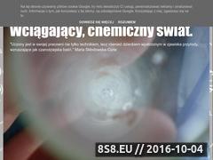 Miniaturka domeny chemicznyswiat.blogspot.com