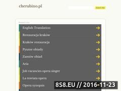 Miniaturka domeny www.cherubino.pl