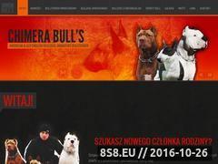 Miniaturka domeny www.chimerabulls.pl