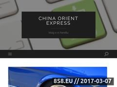 Thumbnail of Import z Chin Website