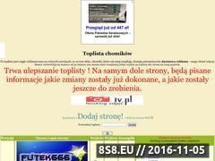 Miniaturka domeny www.chomikuj-top.top-100.pl