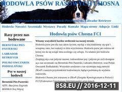 Miniaturka domeny www.chosna.pl