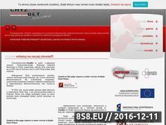 Miniaturka domeny www.chyzbet.pl