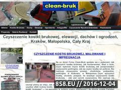 Miniaturka domeny clean-bruk.pl