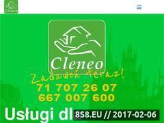 Miniaturka domeny cleneo.pl