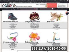 Miniaturka domeny www.colibro.pl