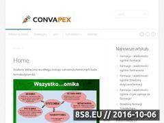 Miniaturka domeny convapex.pl