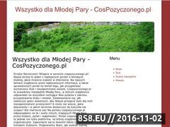 Miniaturka domeny www.cospozyczonego.pl