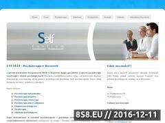 Miniaturka domeny www.cst-self.pl
