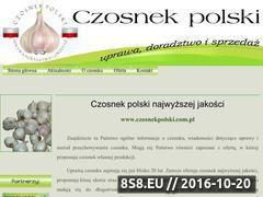 Miniaturka domeny czosnekpolski.com.pl