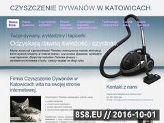 Miniaturka domeny czyszczeniedywanow.katowice.pl