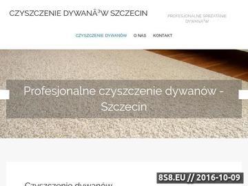Zrzut strony CZ.KACZMARCZYK pranie wykładzin dywanowych