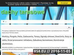Miniaturka domeny www.dachytarasowe.eu