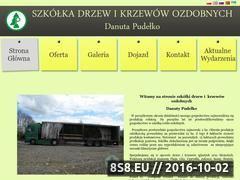 Miniaturka domeny www.danutapudelko.pl