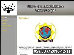 Miniaturka domeny detektyw-pajak.pl
