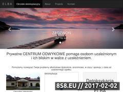 Miniaturka domeny detoks24.pl