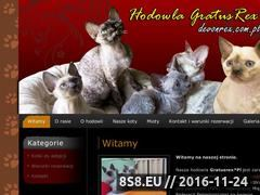 Miniaturka domeny www.devonrex.com.pl