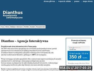 Zrzut strony Agencja Interaktywna Dianthus - Strony WWW Łódź
