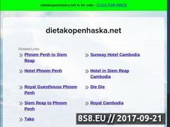 Miniaturka domeny dietakopenhaska.net
