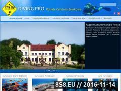 Miniaturka domeny www.divingpro.eu